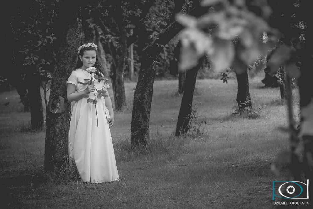 sesja - fotograf